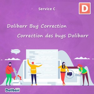 Dolibarr Bug Correction Service