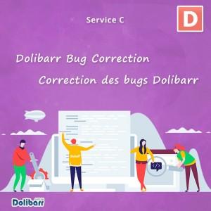 Service de correction des bugs Dolibarr