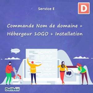 Service: Commande Nom de domaine + Hébergeur 10GO + Installation Dolibarr