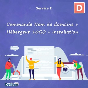 Service: Order Domain name + 10GO host + Dolibarr installation