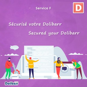 Service: Secured your Dolibarr