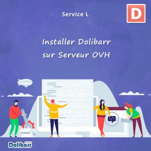 Service: Install Dolibarr on OVH Server